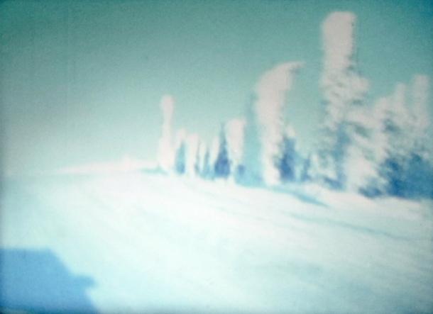 GeorgieFriedman-ArcticCircleStill2007